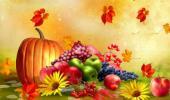 Что нам осень принесла?