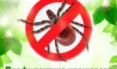 ВНИМАНИЕ!!! Профилактика клещевых инфекций!
